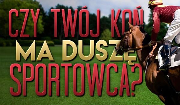 Czy Twój koń ma duszę sportowca?