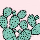 Kaktusiasta