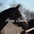 Happy_Caroline