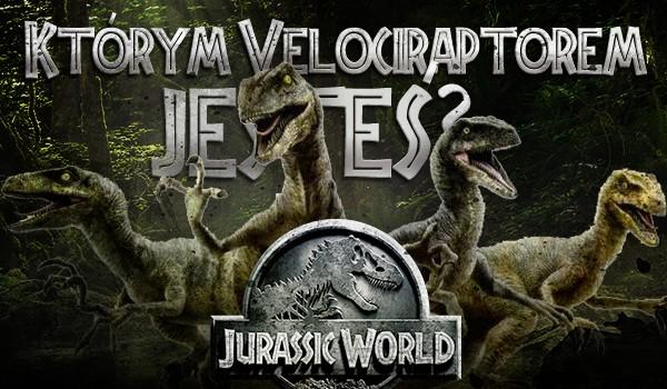 """Którym Velociraptorem z filmu """"Jurassic World"""" jesteś?"""