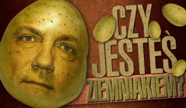 Czy jesteś ziemniakiem?