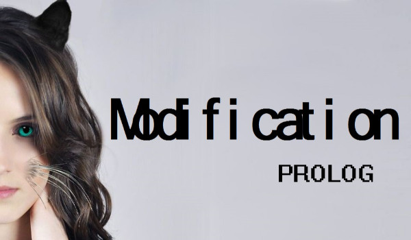 Modification – Prolog