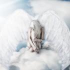 Aniolkowa
