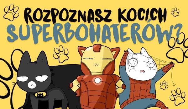 Rozpoznasz kocich superbohaterów?