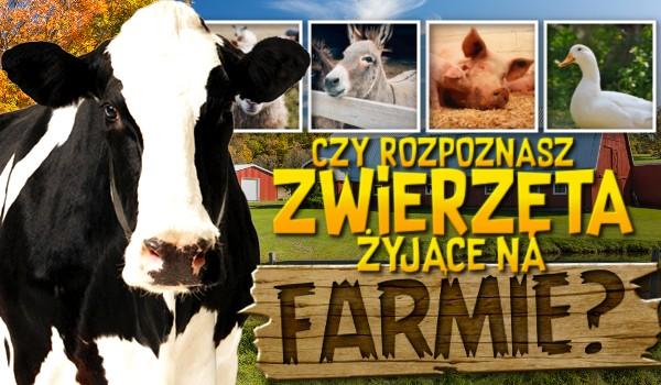 Czy rozpoznasz zwierzęta żyjące na farmie?