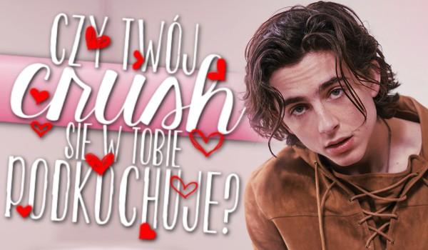 Czy Twój crush się w Tobie podkochuje?