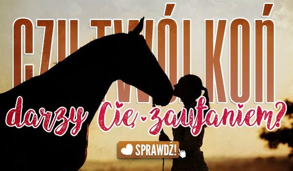 Czy Twój koń darzy Cię zaufaniem?