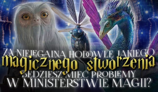 Za nielegalną hodowlę, jakiego magicznego stworzenia będziesz mieć problemy w Ministerstwie Magii?