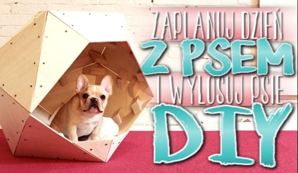 Zaplanuj dzień z psem i wylosuj psie DIY!