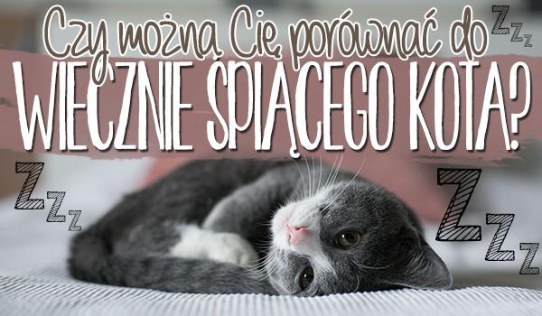 Czy można Cię porównać do domowego kota, który wiecznie śpi?