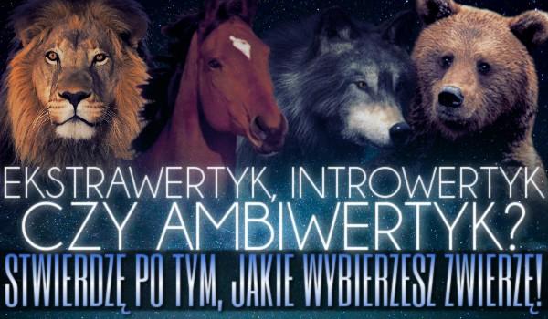 Ekstrawertyk, introwertyk czy ambiwertyk? Stwierdzę po tym, jakie wybierzesz zwierzę!