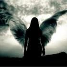_Angel_OF_Death_SQ