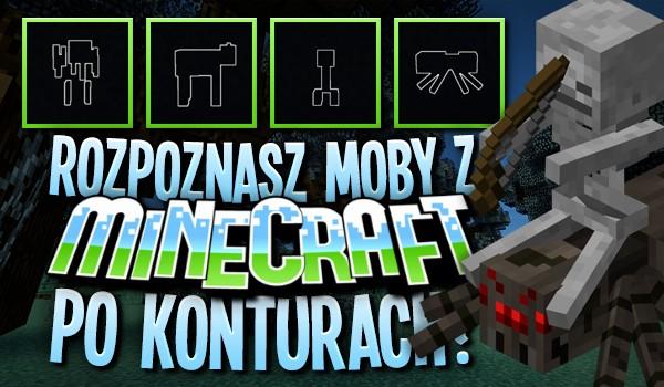 Czy rozpoznasz moby z Minecrafta po konturach?
