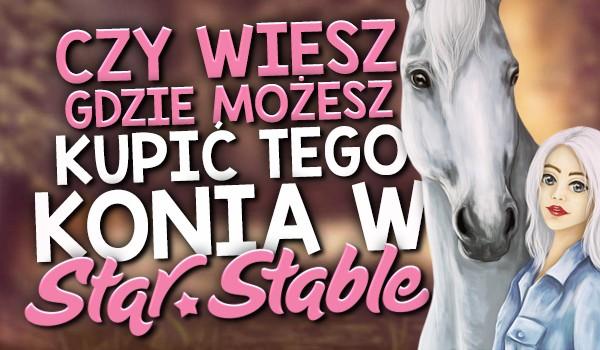 """Czy wiesz, gdzie możesz kupić tego konia w """"Star Stable Online""""?"""