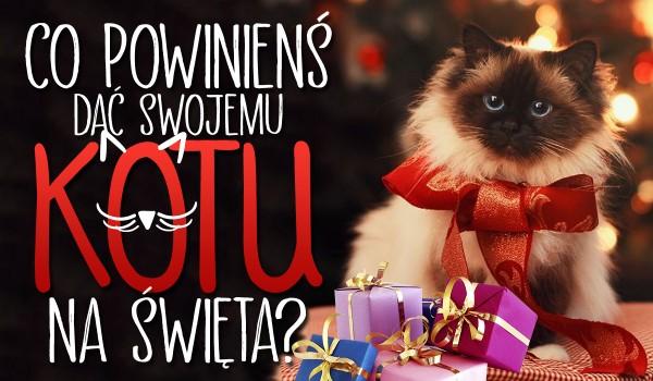 Co powinieneś dać swojemu kotu na święta?
