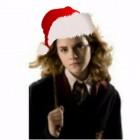 Julia_Potter3