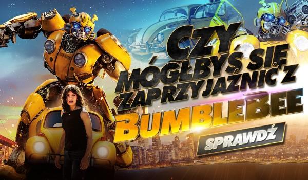 Czy mógłbyś się zaprzyjaźnić z Bumblebee?