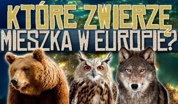 Które zwierzę mieszka w Europie?