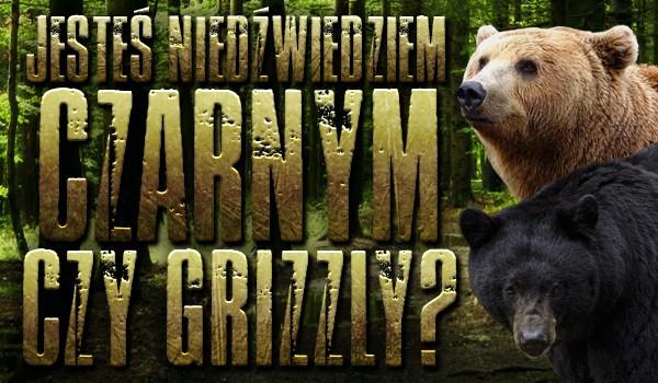 Jesteś niedźwiedziem czarnym czy grizzly?