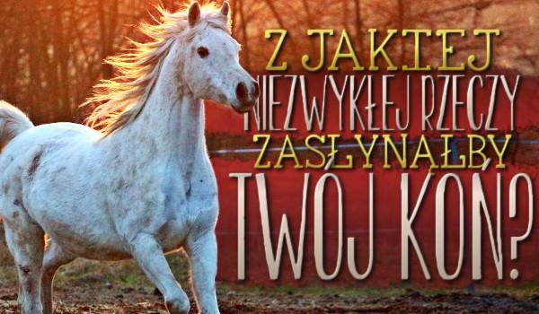 Z jakiej niezwykłej rzeczy zasłynąłby Twój koń?