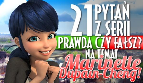 """21 pytań z serii """"Prawda czy fałsz?"""" na temat Marinette Dupain-Cheng!"""
