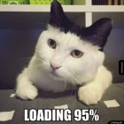 loading95
