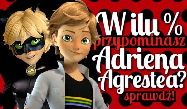 W ilu % przypominasz Adriena Agreste'a?