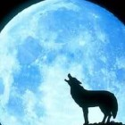 Artemida_Moon