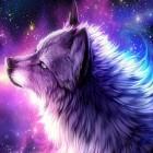Kolorowy_wilk