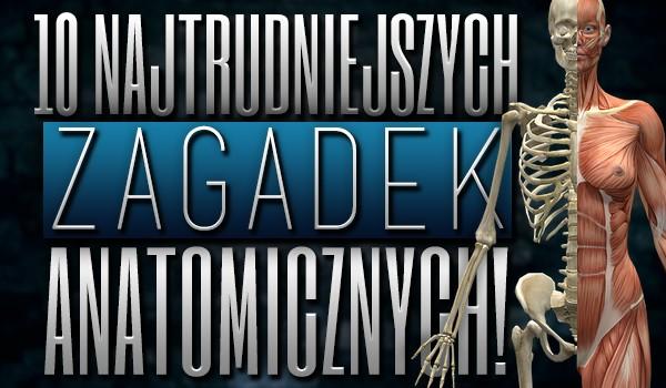 10 najtrudniejszych zagadek anatomicznych!