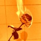 ...Fire...