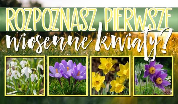 Rozpoznasz pierwsze wiosenne kwiaty?