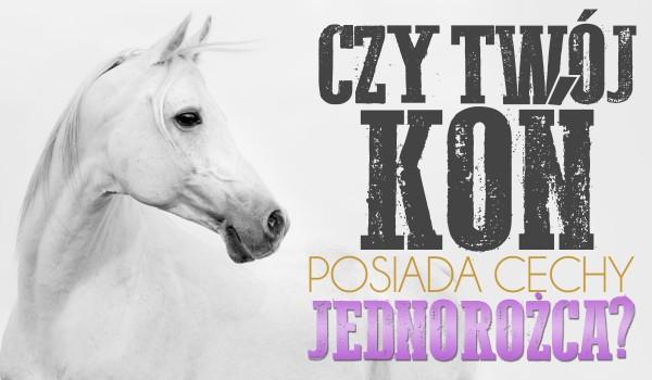 Czy Twój koń posiada cechy jednorożca?