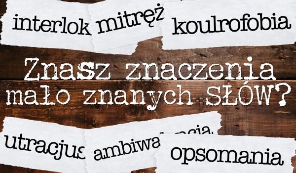 Czy znasz znaczenie tych mało znanych słów?