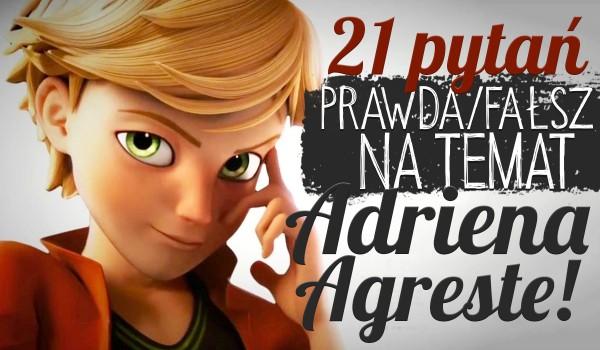 """21 pytań z serii """"Prawda czy fałsz?"""" na temat Adriena Agreste!"""