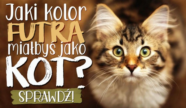 Jaki kolor futra mógłbyś mieć jako kot?