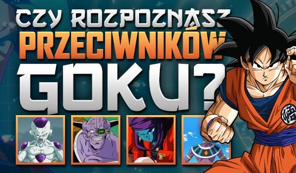 Rozpoznasz wszystkich przeciwników Goku?