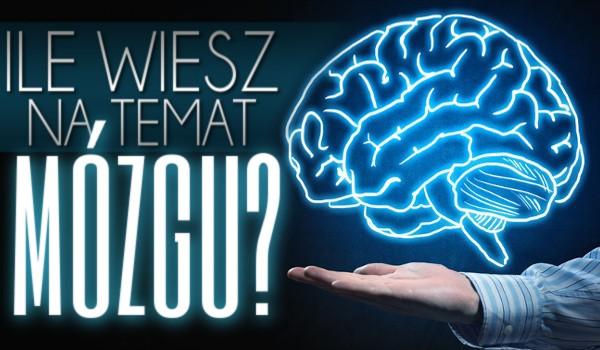 Ile wiesz na temat mózgu? Wersja trudna.