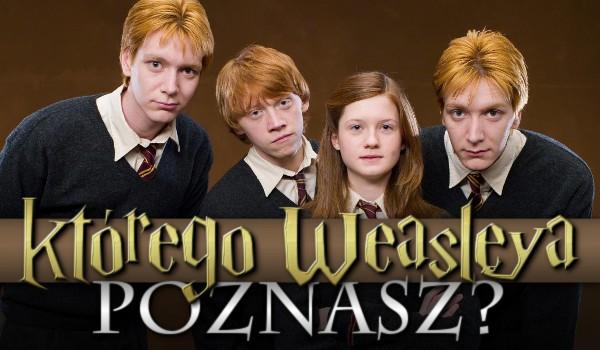 Którego Weasleya poznasz?
