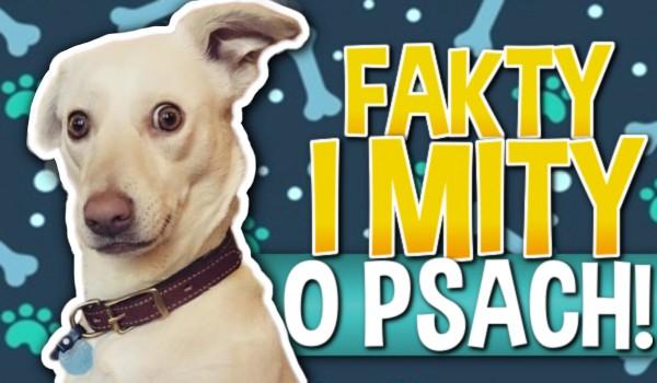 Fakty i mity o psach!
