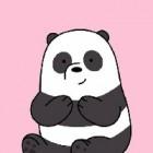 Panda_btw-_-