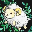 .Owieczka.