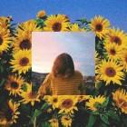 sun.flower