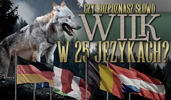 """Czy uda Ci się rozpoznać słowo """"wilk"""" w 25 innych językach?"""