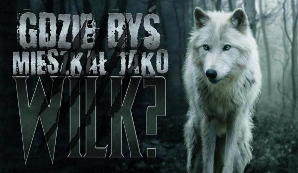 Gdzie byś mieszkał jako wilk?