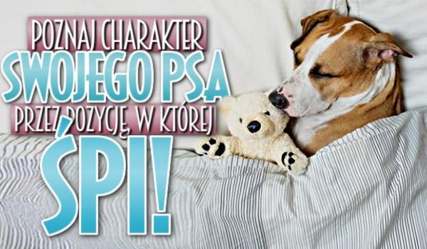 Poznaj charakter swojego psa przez pozycje, w której śpi!