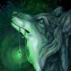 Midnight_Wolf
