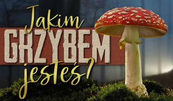 Jakim jesteś grzybem?
