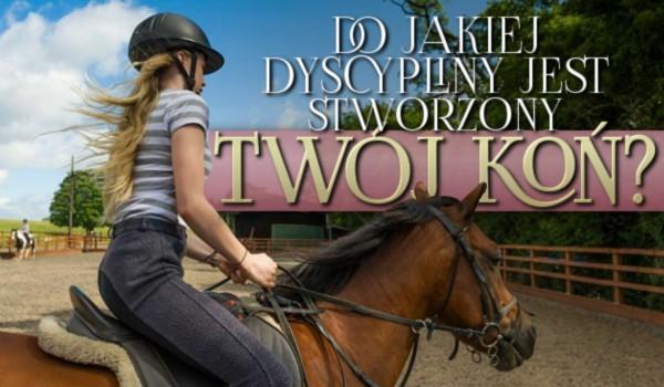 Do jakiej dyscypliny jest stworzony Twój koń?