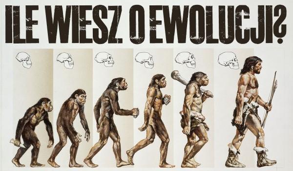 Ile wiesz o ewolucji?